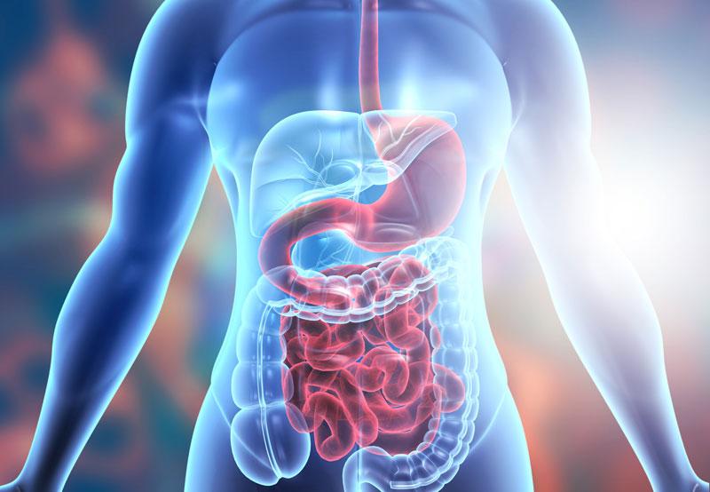 Texas Modern Gastroenterology - FAQ's